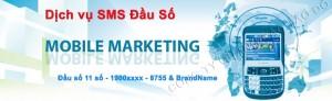 sms-dauso-944x288-940x288-1